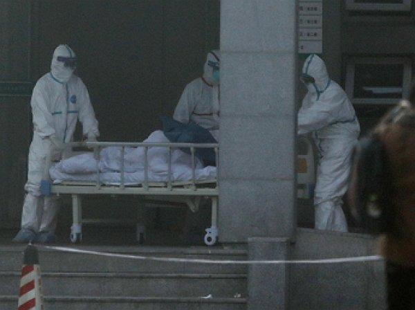 В Петербурге и Москве госпитализированы три человека с подозрением на коронавирус