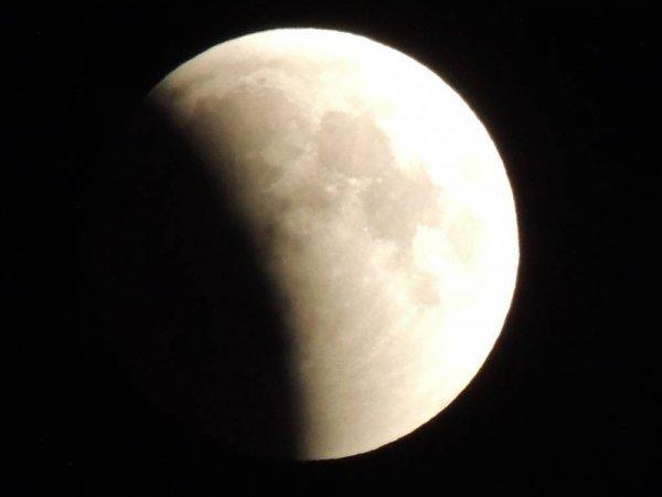 Лунное затмение 2020 года: что можно делать и что нельзя 10-11 января