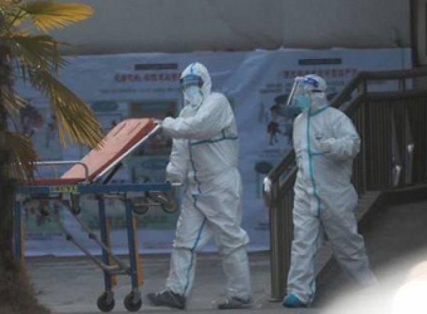 Ученые установили неожиданный источник китайского коронавируса