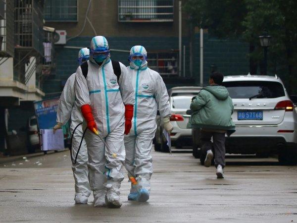 """""""Что, опять?!"""": в Китае паникуют из-за нового смертельного хантавируса"""