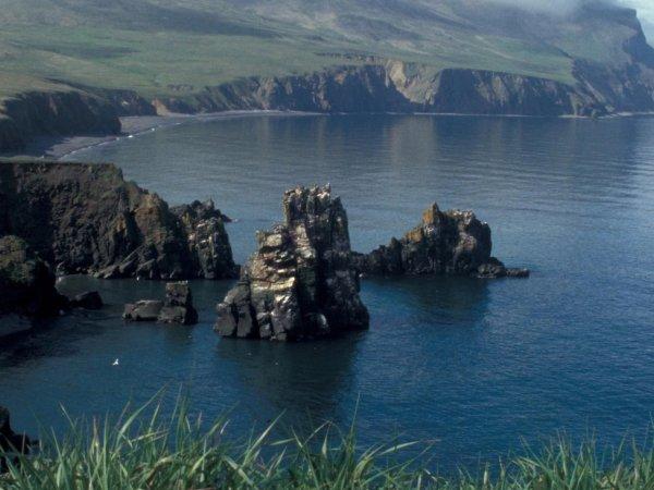 СМИ: Россия намерена забрать у США часть Берингова моря