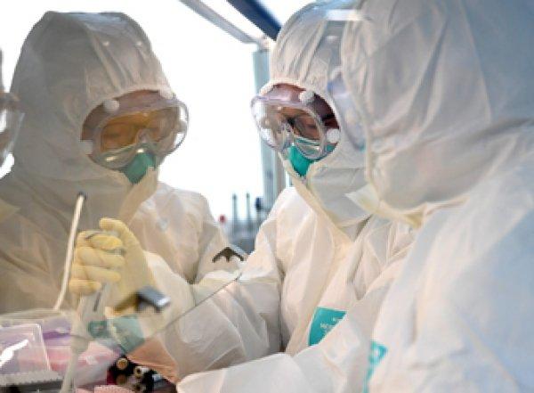 СМИ: обнаружены новые факты искусственного происхождения коронавируса