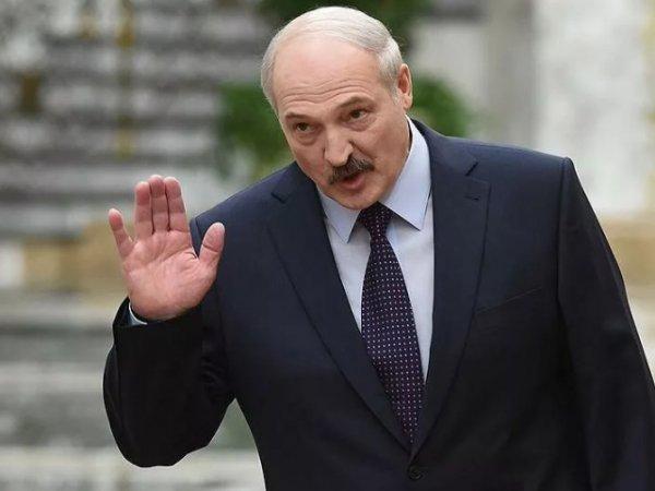 """""""Своим вирусом займись"""": Лукашенко нагрубил президенту Литвы"""