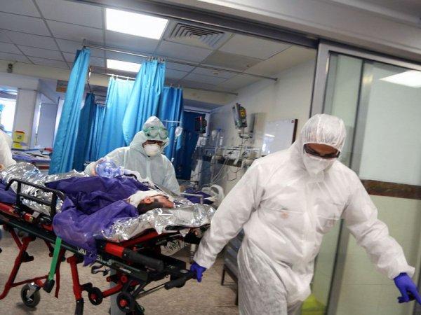 Академик РАН назвал самый ранний срок завершения эпидемии коронавируса в РФ