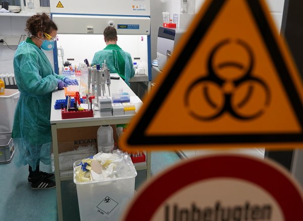 Убивающее коронавирус за 48 часов лекарство из Австралии оказалось ветеринарным