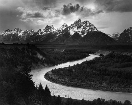 40 лучших фото природы по версии Международной лиги фотографов-натуралистов