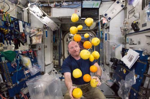 Как живут астронавты на борту МКС: уникальные фото