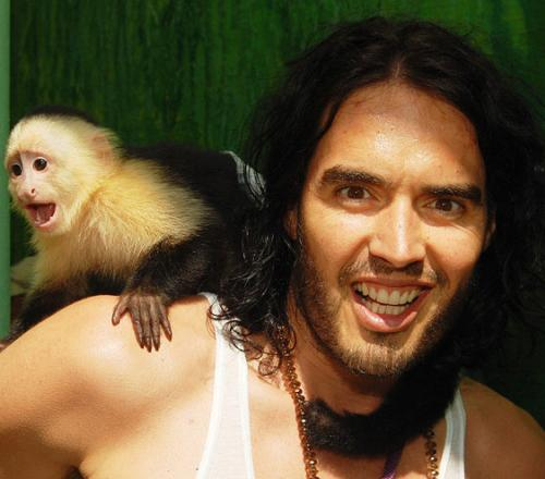 Звезды Голливуда общаются с обезьянами