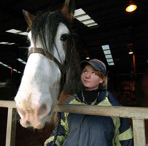 Самая большая лошадь Великобритании продолжает расти