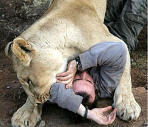 «Заклинатель зверей» общается с львами по-человечески