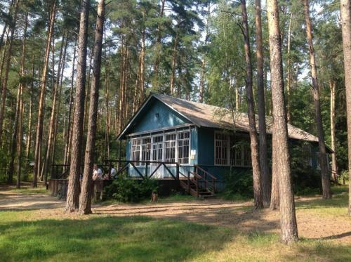 10 мест, где когда-то жила советская элита на дачах