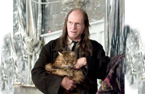 13 актеров из фильмов о Гарри Поттере, снявшихся в «Игре престолов»