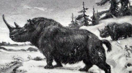 10 древних животных, которых могут вернуть к жизни