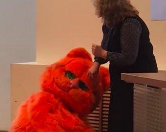 Студент пришел на сдачу зачета в костюме кота