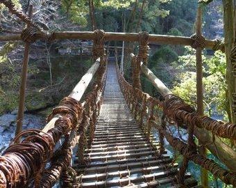 Веревочный мост с туристами рухнул в Китае