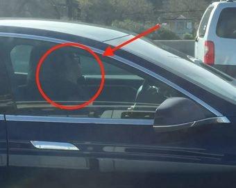 Пока владелец спал в Tesla, его автопилот пытался уйти от полиции