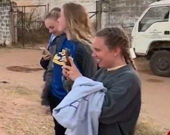 Слон жестоко наказал девушку-папарацци