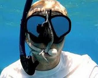 Ныряльщик снял на видео осьминога, который забрался ему в рот