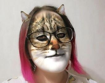 Котов шокировали «кошачьи» фильтры для социальных сетей