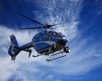 Неизвестные сбросили свинью с вертолёта в бассейн миллионера