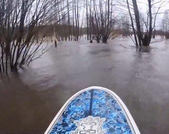 Серфер прокатился по затопленному лесу под Питером