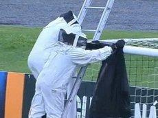 Рой пчел сорвал футбольный матч в Бразилии