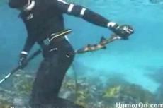 Акула укусила дайвера
