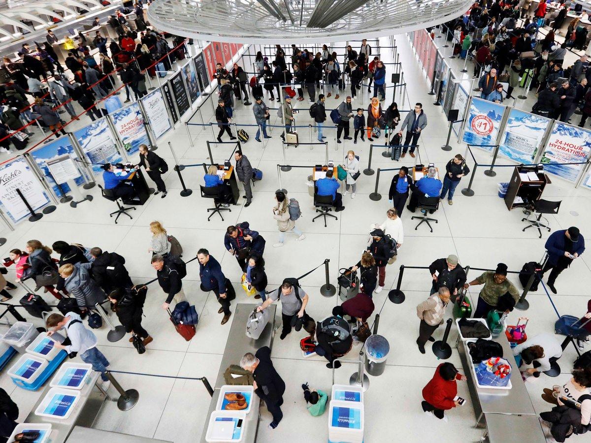 Крабы сбежали из багажа и устроили переполох в аэропорту