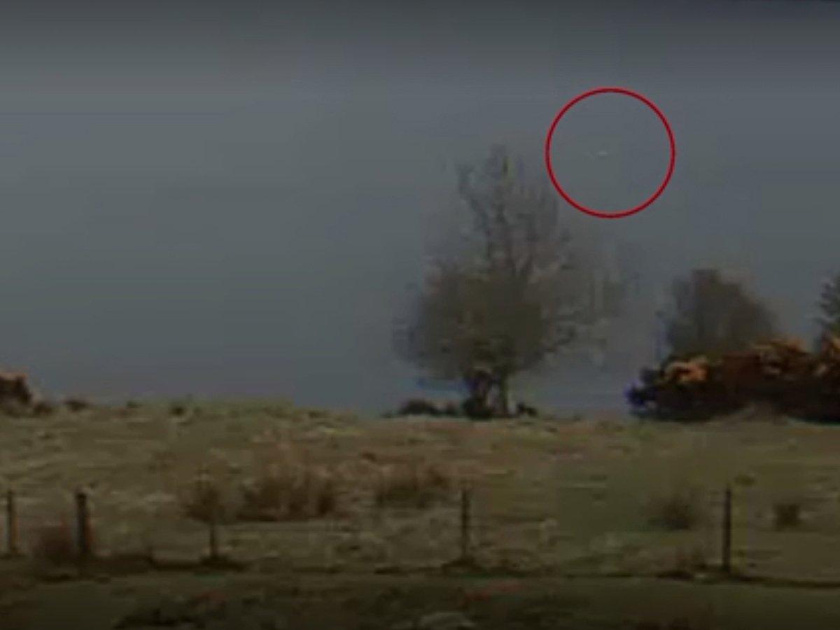 Видео дня: в Англии гигантское Лох-несское чудовище сняли на камеру
