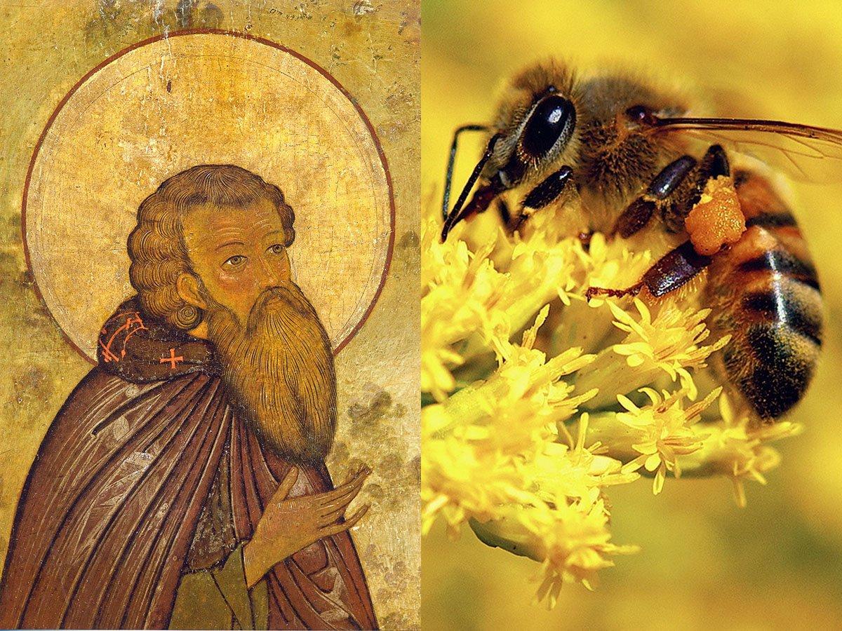 Зосима Пчельник