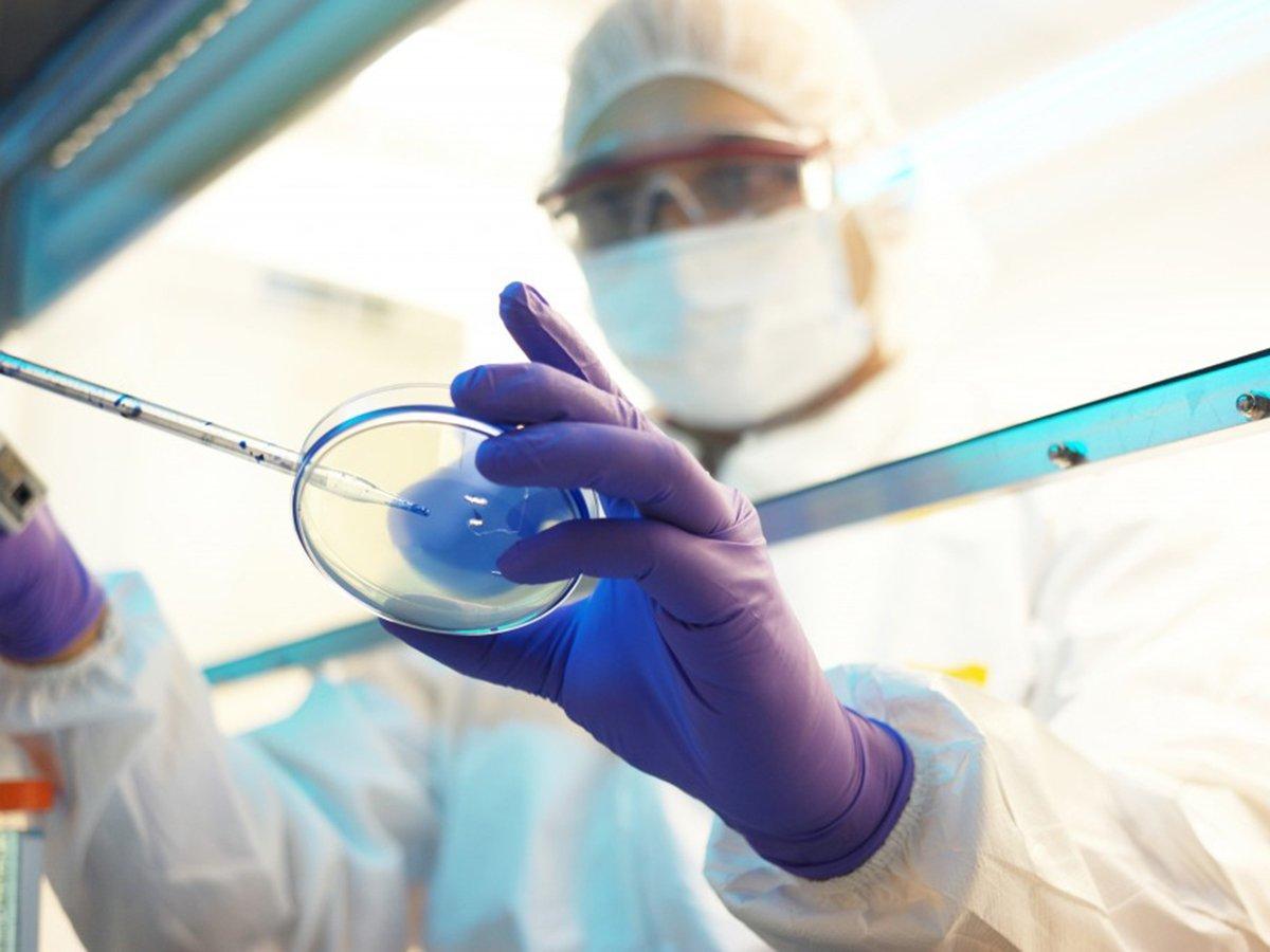 """Ученые назвали главные """"мишени"""", по которым бьет коронавирус в организме"""