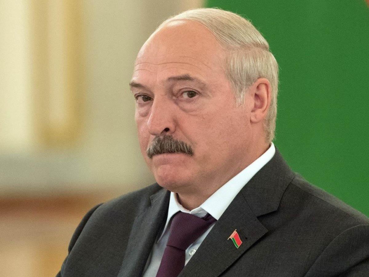 «От закрытия границы «бомбит»: Лукашенко уличили в гигантском «перепроизводстве» креветок и авокадо