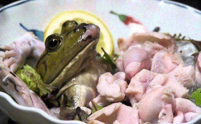 Животные, которых люди едят живыми