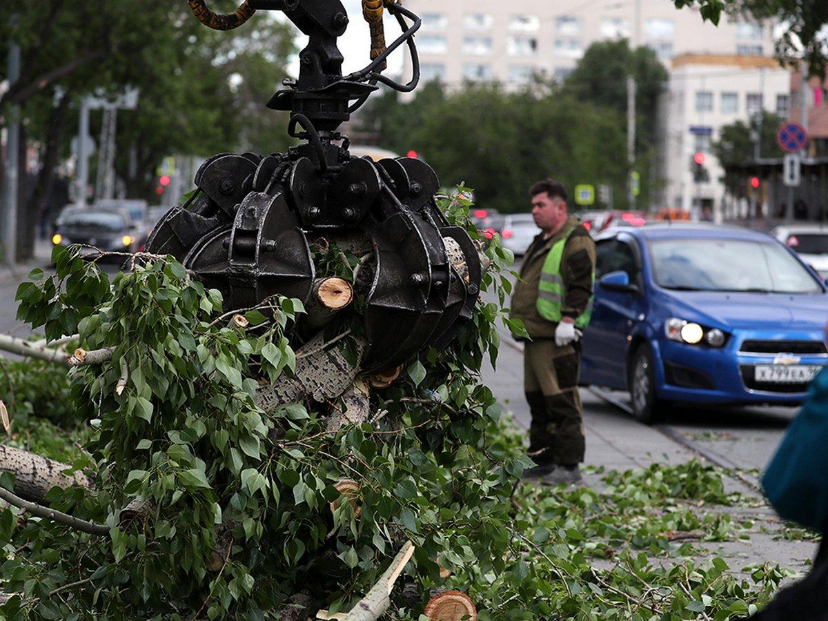 Ураган в Свердловской области убил двух человек