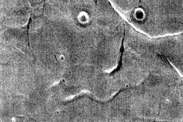Что такое парейдолия, и почему мы видим лица там, где их нет