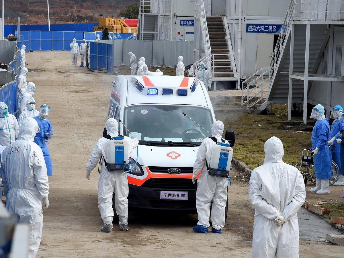 Стало известно, откуда пришел коронавирус на рынок в Пекине