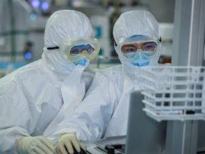 Ученые: COVID-19  превращает клетки организма в