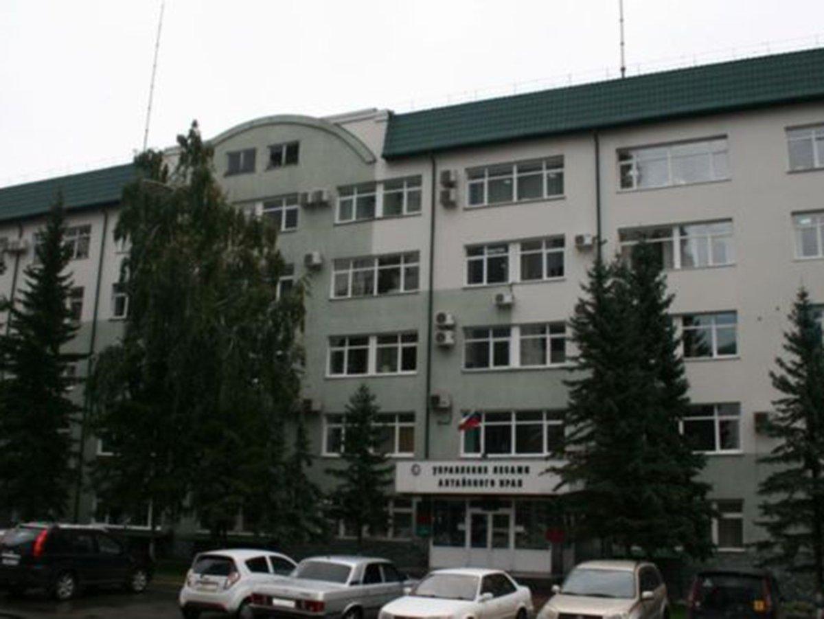 Управление лесами Алтайский край обыски