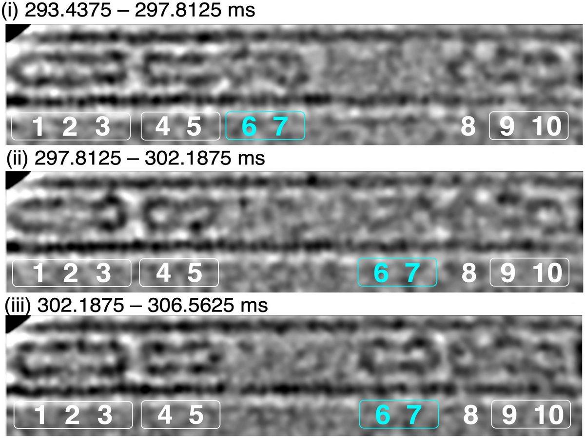 Ученые сняли на видео движение молекул со скоростью 1600 кадров в секунду