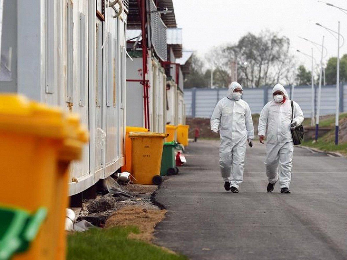 В ВОЗ предупредили о второй разрушительной волне коронавируса