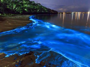 Самые прекрасные заливы мира