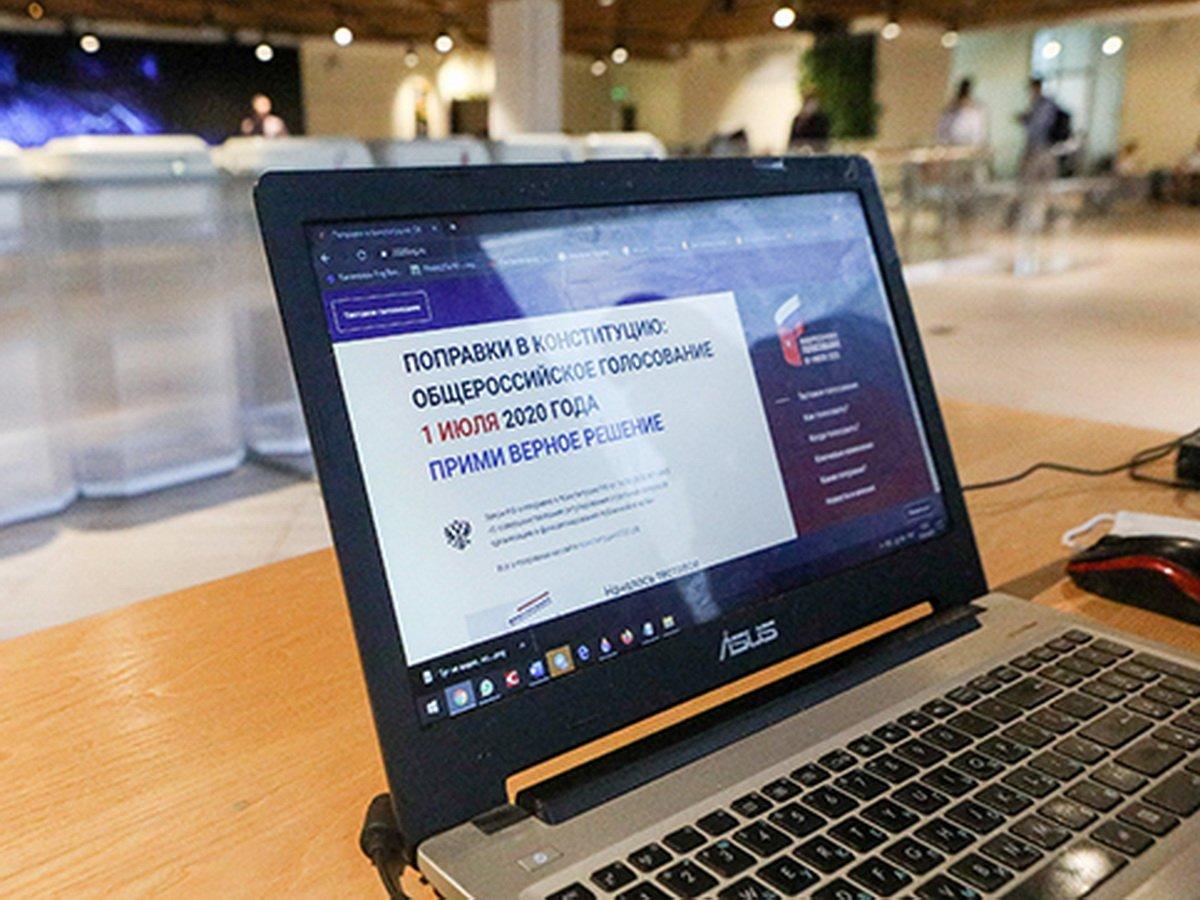 Паспорта участников онлайн-голосования по поправкам выложили в открытый доступ