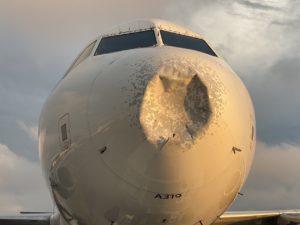 В США экстренно сел самолет с загадочным повреждением носа