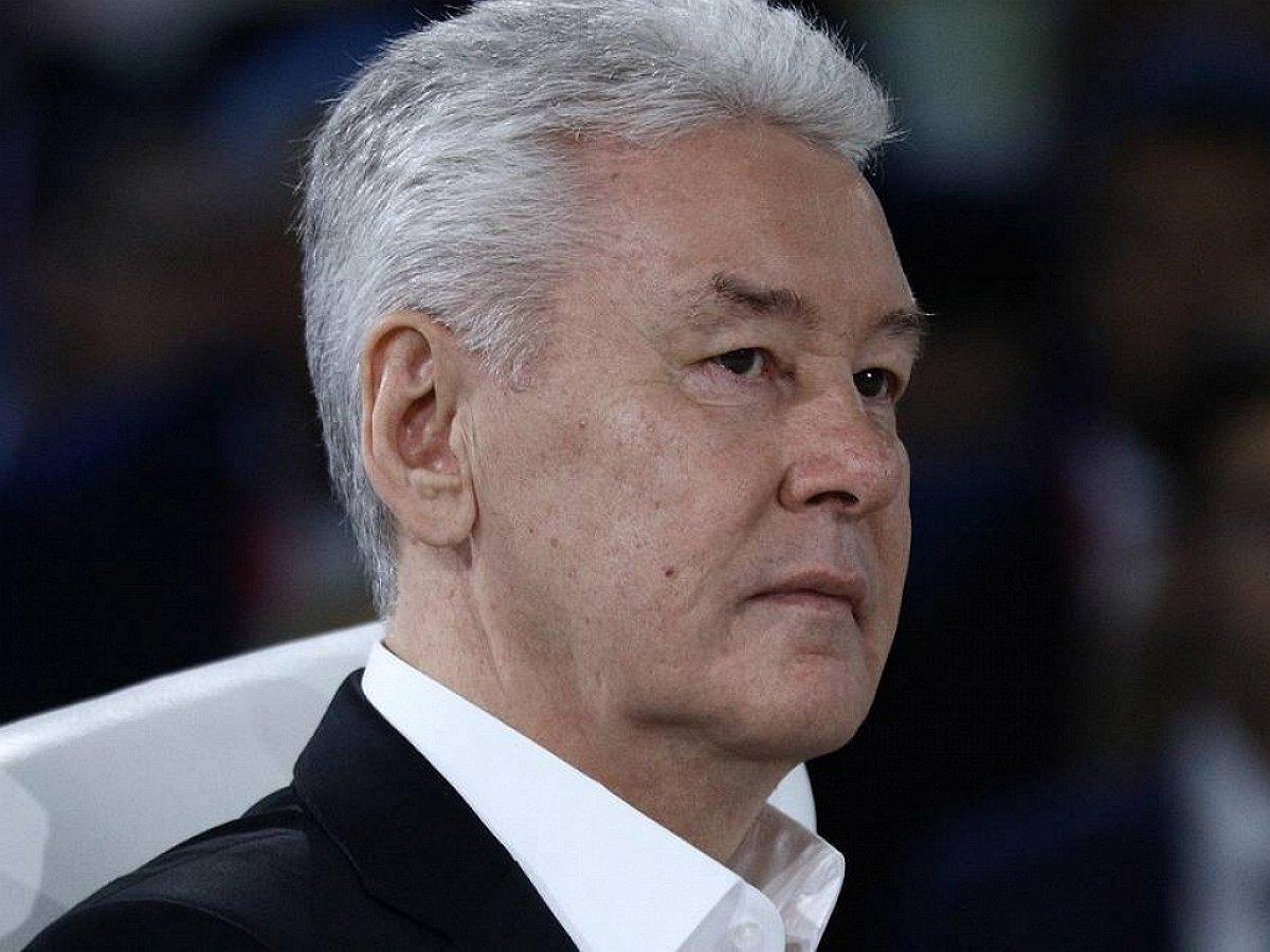 Собянин ввел карантин по бешенству в двух районах Москвы