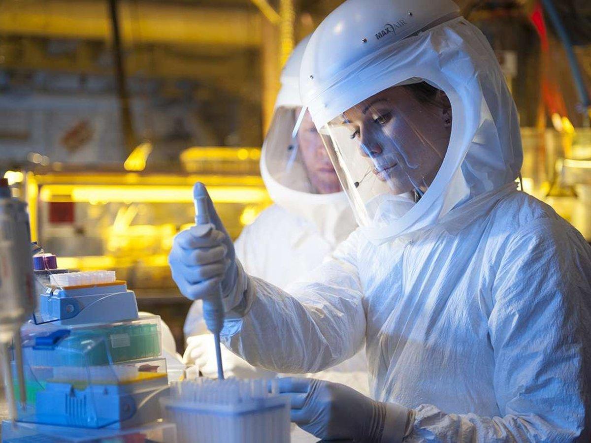 Ученые исследуют коронавирус