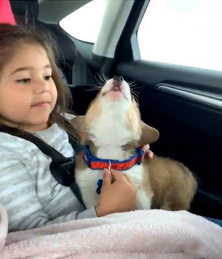 Девочка со щенком