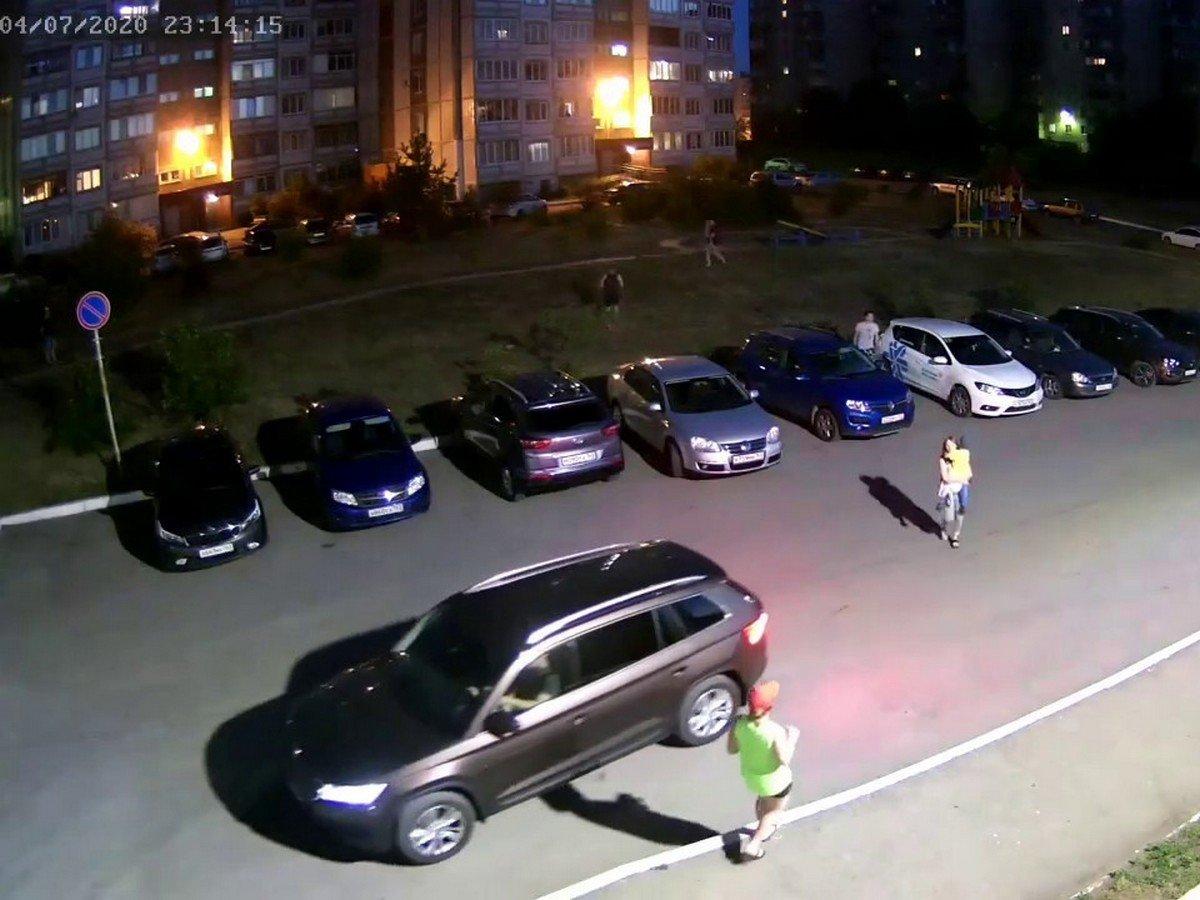 Бродячие собаки напали на гуляющих детей в Тольятти