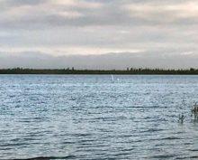 Озерный монстр