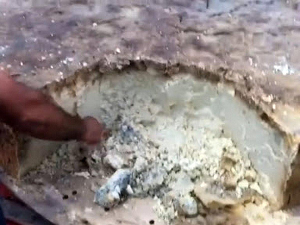 Гигантская головка сыра