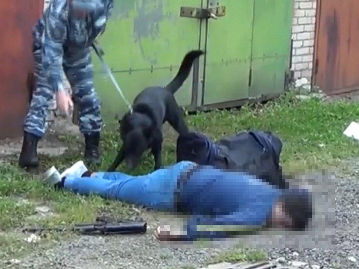 Ликвидированный в Химках террорист находился в РФ легально